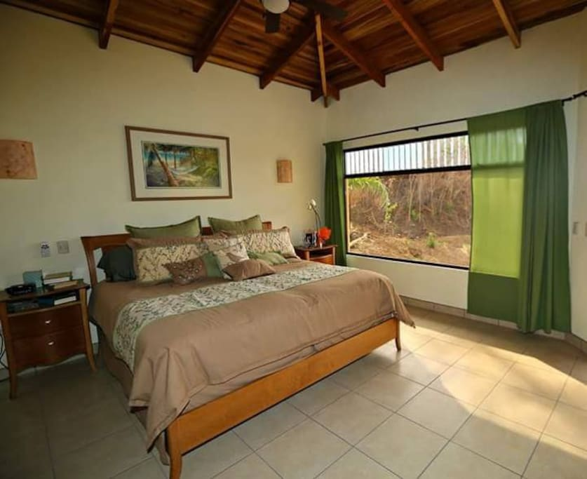 Spacious Master Bedroom with King Bed and Walk in Closet and private Bath.