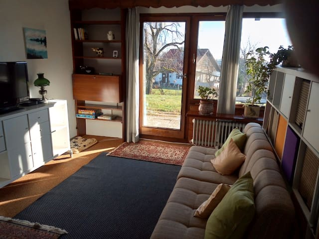 Wohnungs-Kleinod im südlichen Hochschwarzwald