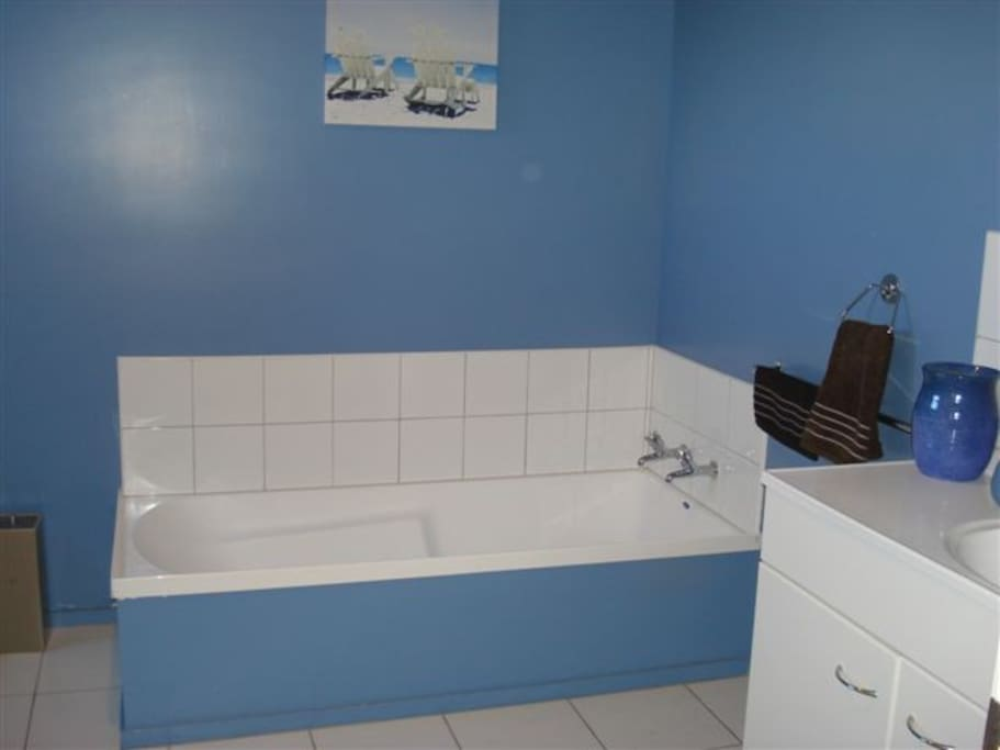Your private bathtub and seperate shower! (Shower is to the left)