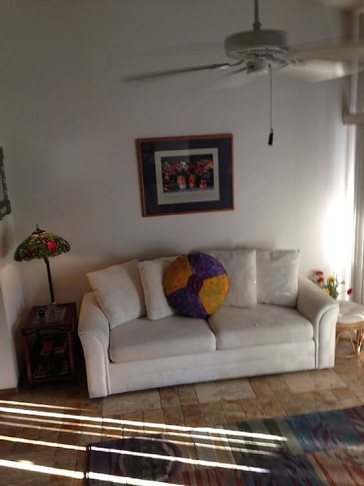 15' vaulted ceilings Living Room and Kitchen area 500 sq ft. Queen Sofa Sleeper