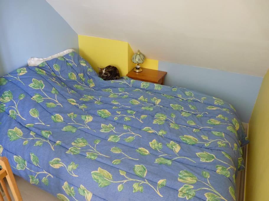 chambre pour l 39 euro de foot 2016 chambres d 39 h tes louer corquilleroy centre val de loire. Black Bedroom Furniture Sets. Home Design Ideas
