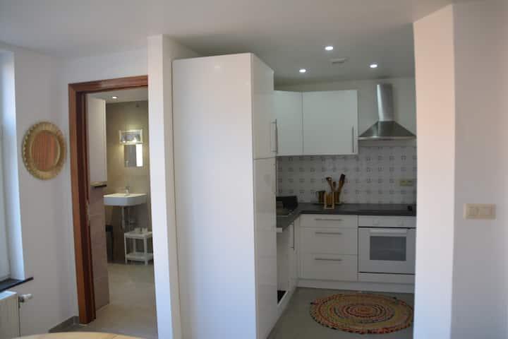 Appartement dans une maison bourgeoise