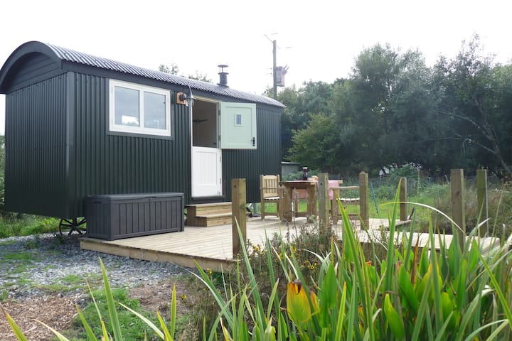 Delightful Shepherds Hut on Cornish Smallholding .