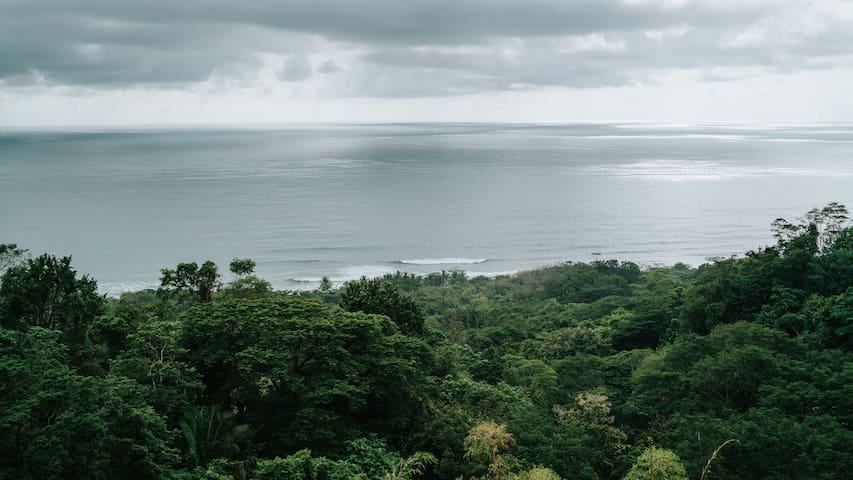 SVV View