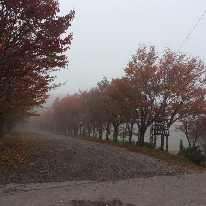 近所、秋の気配のころ