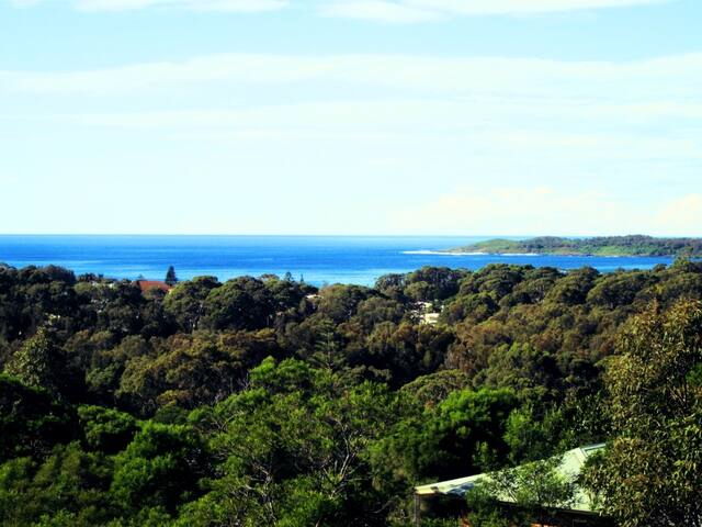 Baywatch - 3 acres of bush bliss with ocean views - Bawley Point - House
