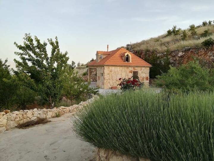 Breathtaking vue, big garden, traditonal house