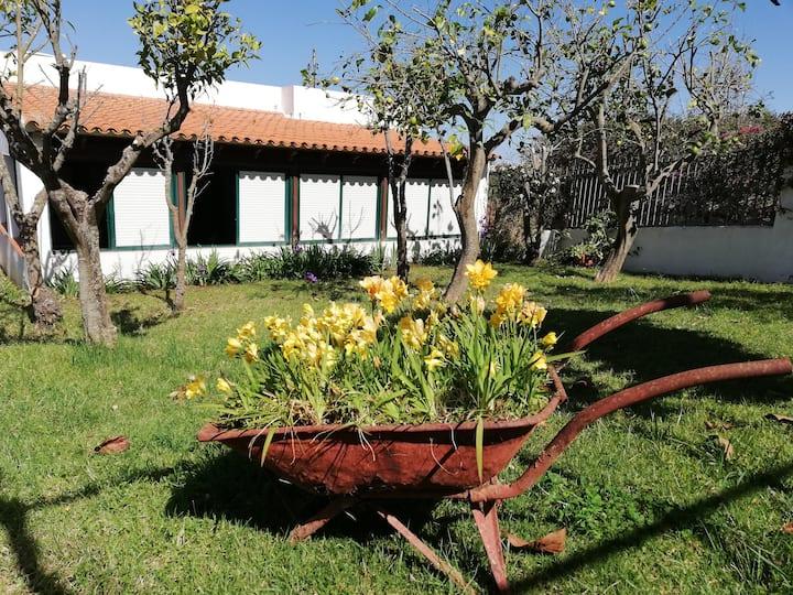 Limón y sol cottage. El Ravelo. El Sauzal