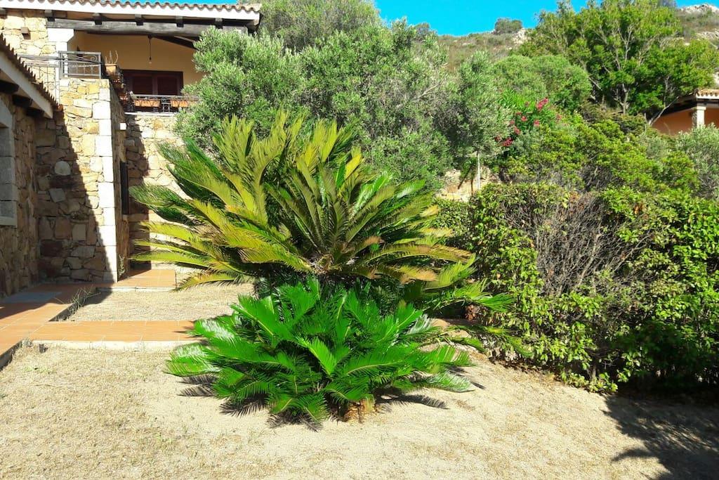 dettaglio   veranda patio giardino