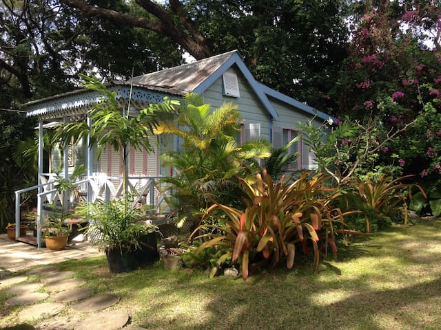 1bed 1bath St.James -OCT AND NOV  DEALS JB Cottage
