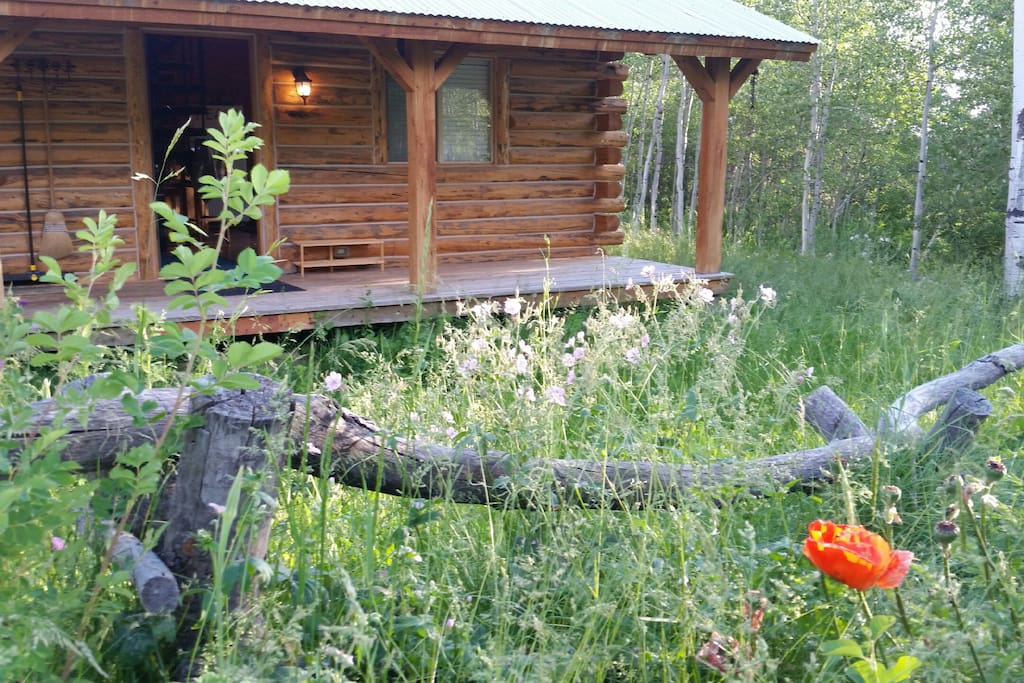 This cabin is surrounded by abundant wild flowers