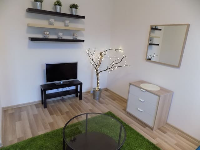 Apartment near the city center  with parking - Karlovy Vary - Appartement