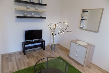 Apartment near the city center  with parking - 卡罗维发利(Karlovy Vary) - 公寓