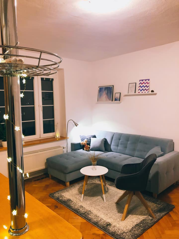 Cozy studio close to city center