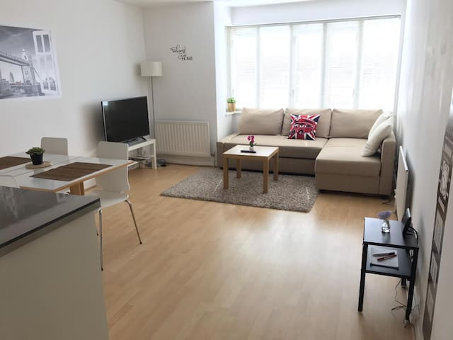 One bedroom apartment for business or family stay