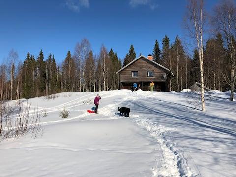 Timrad stuga i N Jämtlandsfjällen