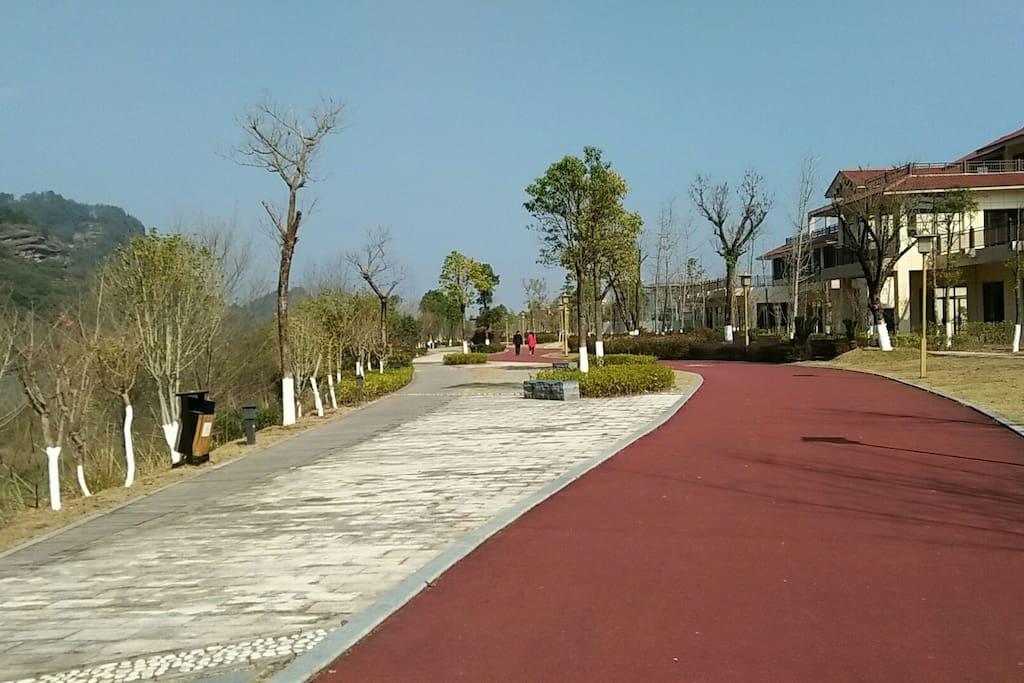 漫步悠行道,滨江观山色。
