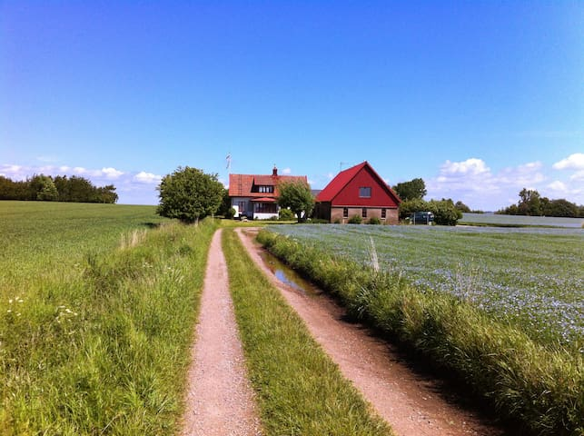 Rural retreat on the Island of Ven - Landskrona NV