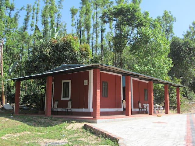 Samruddhihomestay chikmagalur