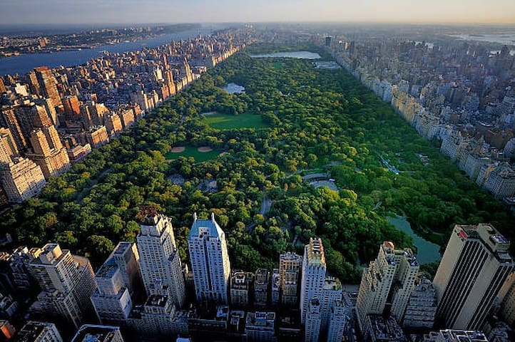 Central Park is less than 20 minutes away.