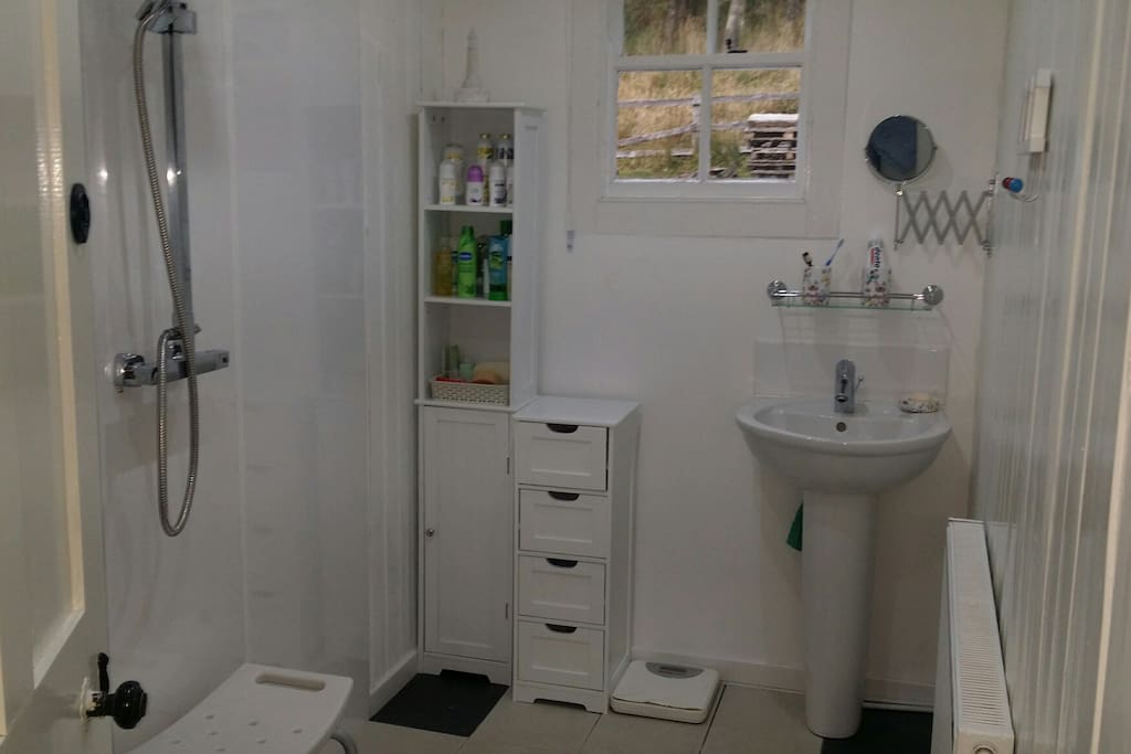Wetroom with Vanity Basin