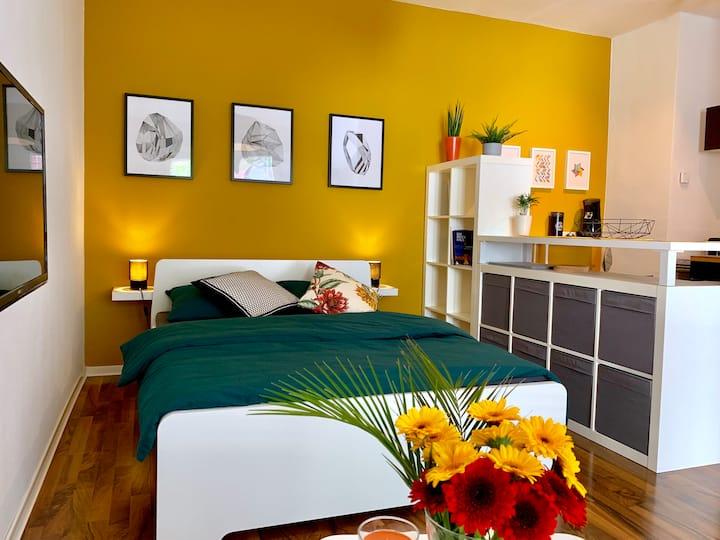 1-Zimmer Appartement im Herzen Mannheims
