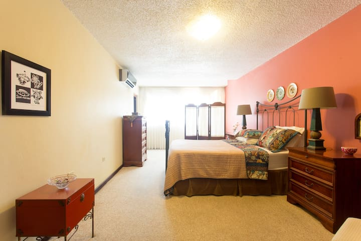 The Master Room w/ Queen Bed & Bath - Guaynabo - Huis