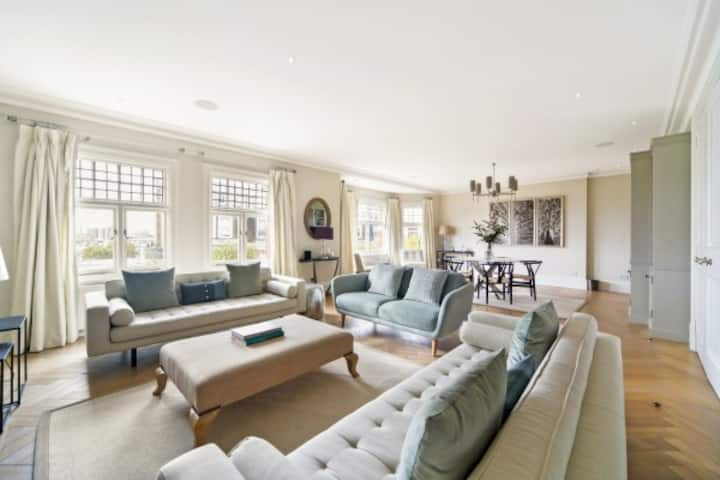Amazing apartment in central london