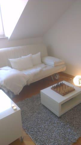 Freundlichles  Zimmer im Franzosenviertel - Munich