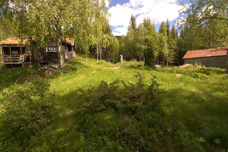 Tømmerhytte/ Timber cabin