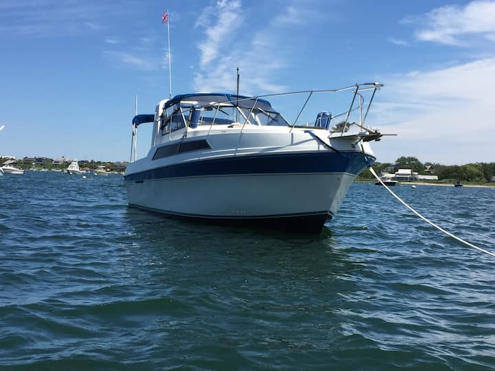 Spacious 32ft Cabin Cruiser, kitchen & hot shower