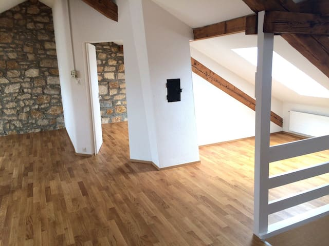 Your charming apartment for the BaselWorld - Basel - Apartmen