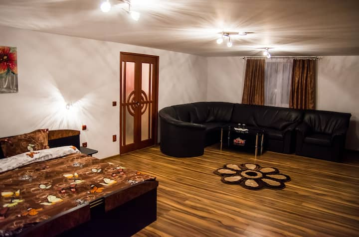 Pensiunea SilvAnka- 2 Bedroom Apartment