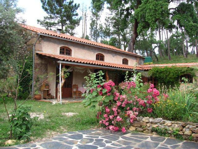 Casa da Fonte - Turismo Rural - Casa de Férias. - Serra da Lousã