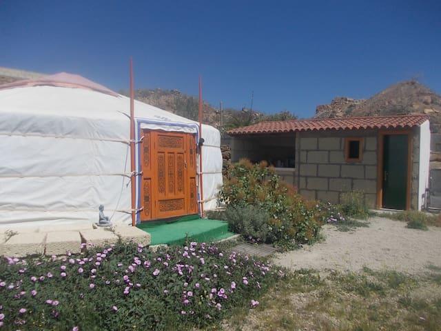 Mongolia rural Naturismo libre