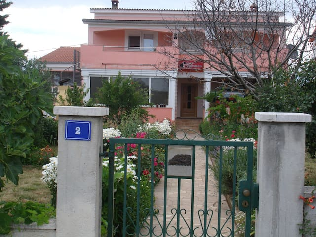 Apartment Ruža 2 - Zadar