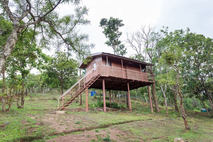 Stilt House - Eastern Incline of the Western Ghats