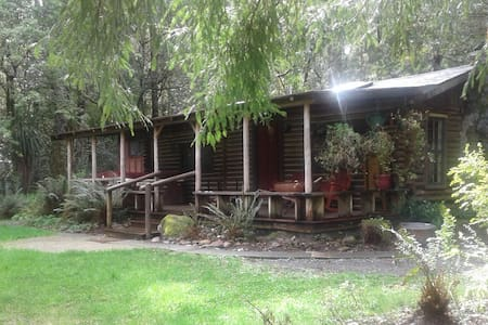 Riverfront Cabin in the Redwoods