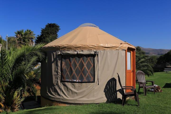 Poolside Yurt at Beachside Resort #1