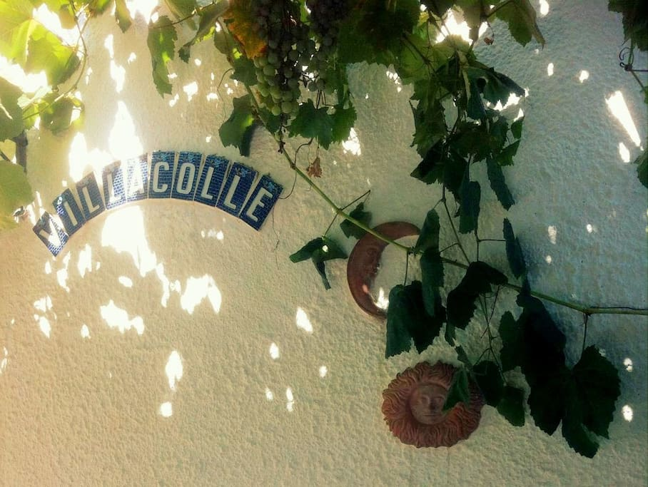 Welcome to Villacolle!