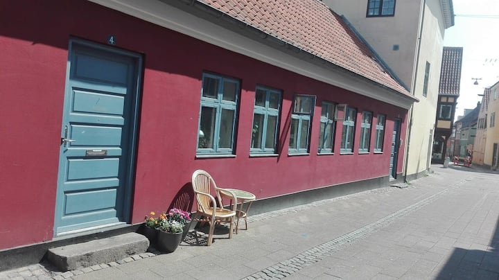 Full town house in the center of Helsingør
