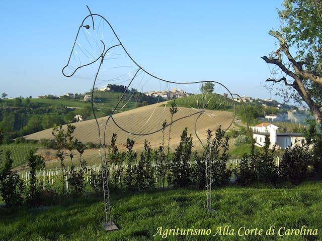 Vista panoramica verso il borgo di Monte Giberto