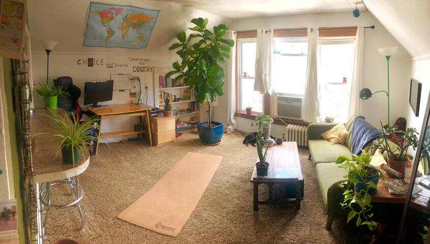 The Treehouse-Bright 1BR near stadium, campus & DT