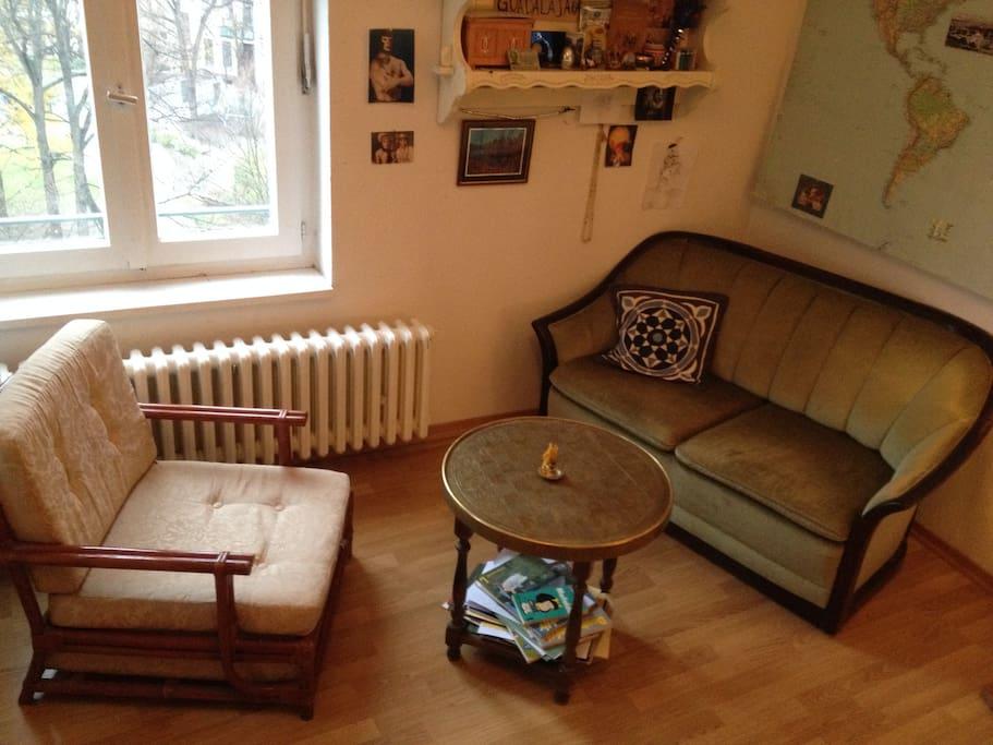 livingroom in the room