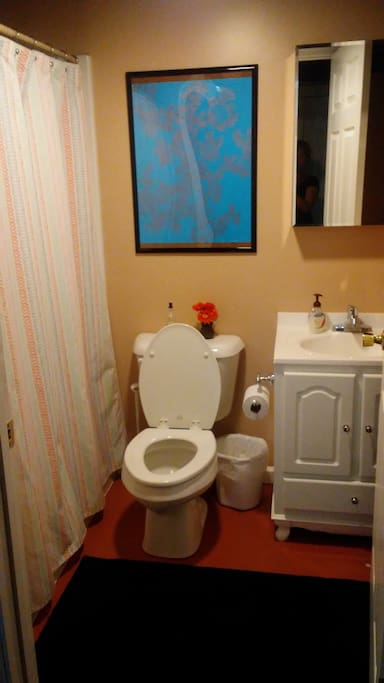 Guest bathroom. Shared only with massage clients.