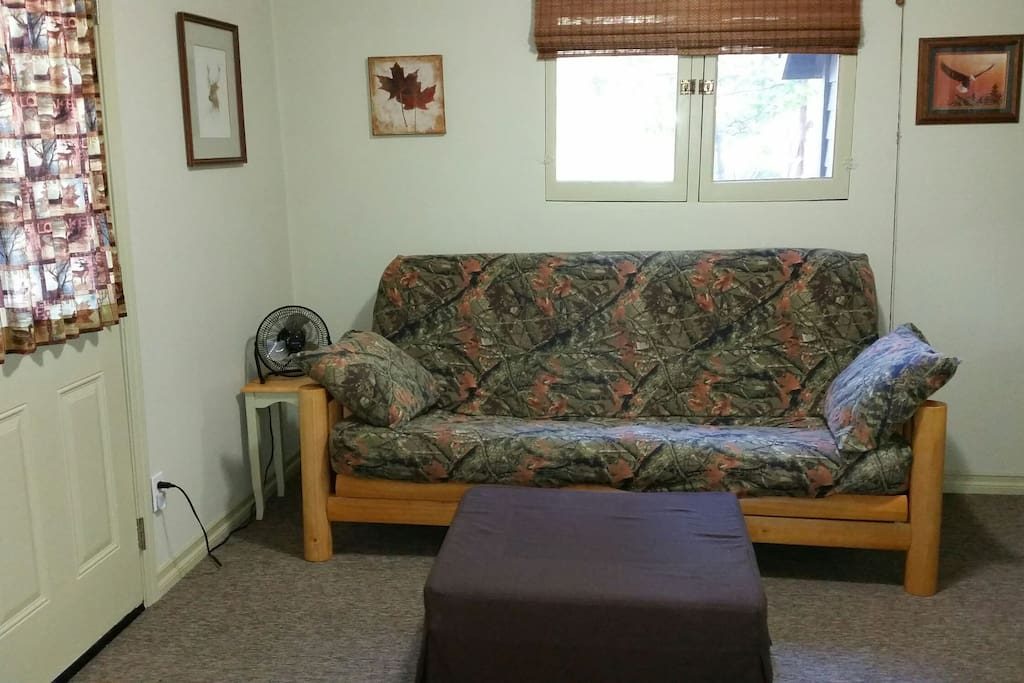 Living area with full size futon bed
