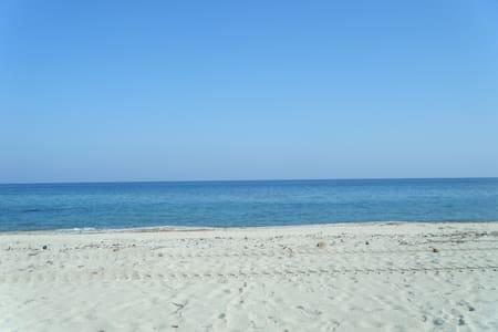 les pied dans l'eau  - Ghisonaccia