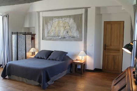 Chambres de charme au château  - Salbris - Bed & Breakfast