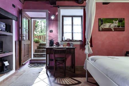 la vecchia casa rosa di ronchè - Cannero Riviera - House - 1