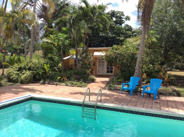 Tropical Poolside Cottage - Miami - Bungalow